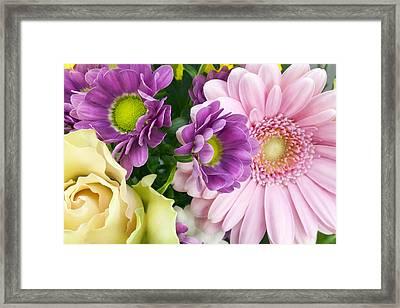 Floral Spring Background Framed Print