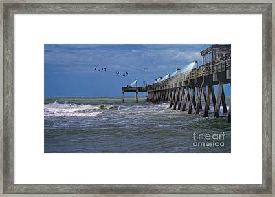 Framed Print featuring the photograph Florida Fishing Pier by Gina Cormier