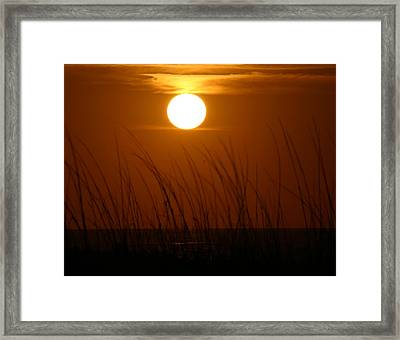 Framed Print featuring the photograph Florida Sunrise by Jeanne Andrews