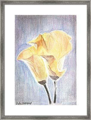 Flowers Framed Print by Safa Al-Rubaye