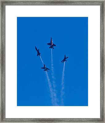 Fly Away Framed Print by Carl Jackson