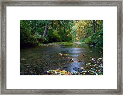 Fly Fisherman's Dilemma  Framed Print by Clifford Crawford