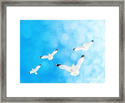 Framed Print featuring the photograph Fly Free by Robin Dickinson
