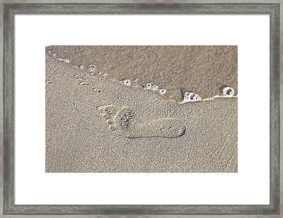 Footprints In The Sand Framed Print by Joana Kruse