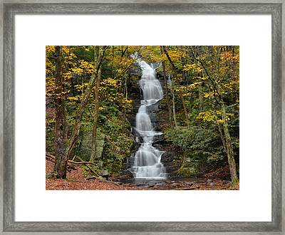 Forest Waterfall In Autumn Framed Print