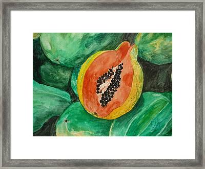 Fresh Papaya For Sale Framed Print by Estephy Sabin Figueroa