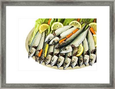 Fresh Uncoocke Fish Framed Print by Soultana Koleska