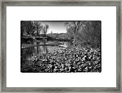 From Under The Bridge Framed Print by David Patterson