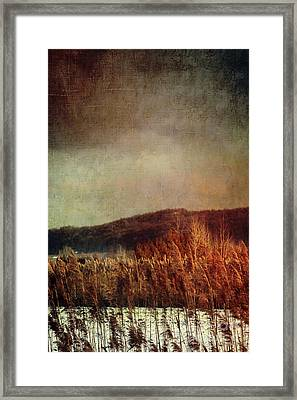 Frosty Field In Late Winter Afternoon Framed Print