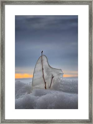 Frozen In Time Framed Print by Heather  Rivet