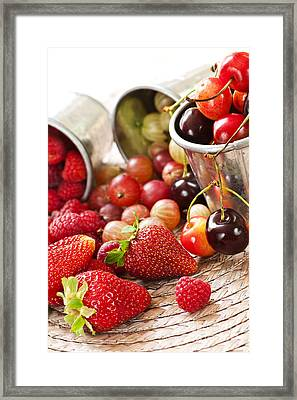 Fruits And Berries Framed Print