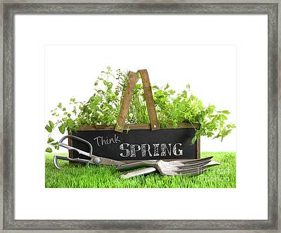 Garden Box With Assortment Of Herbs And Tools Framed Print by Sandra Cunningham
