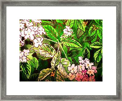 Garden Flowers Sketchbook Project Down My Street Framed Print by Irina Sztukowski