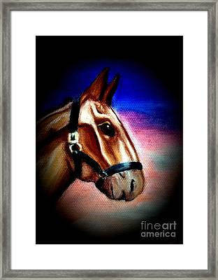 Giddy Up Framed Print