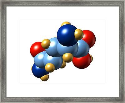Glutamine, Molecular Model Framed Print