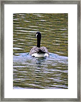 Go With Confidence Framed Print by Rotaunja