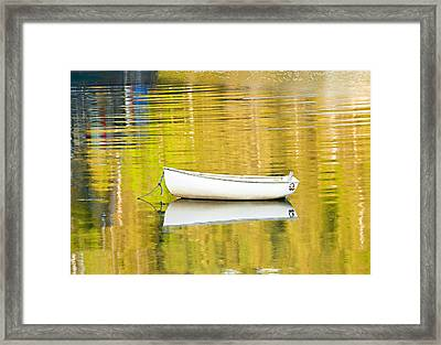 Golden Light Framed Print by Gordon Ripley