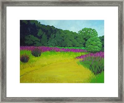 Golden  Meadow Framed Print by Robert Rohrich