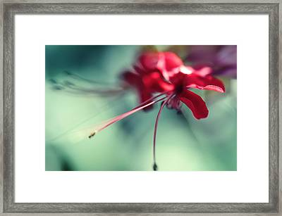 Grace. Natural Watercolor. Touch Of Japanese Style Framed Print by Jenny Rainbow