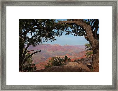 Grand Canyon Framed Print by Olga Vlasenko