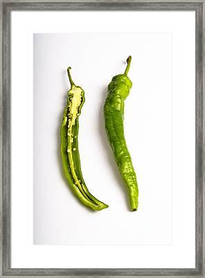 Green Chili Pepper Framed Print