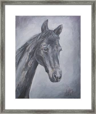 Grey Dawn Framed Print