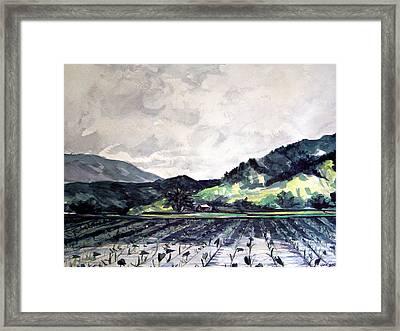 Hanalei Valley Framed Print by Jon Shepodd