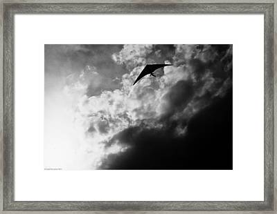 Framed Print featuring the photograph Hang by Michael Nowotny