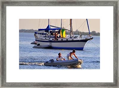 Hanging Out Framed Print by Barry R Jones Jr