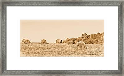 Hay Rolls  Framed Print by Laurinda Bowling