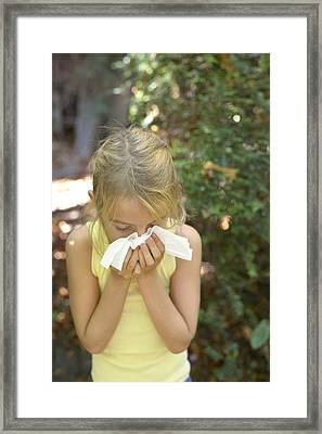 Hayfever Framed Print by Ian Boddy