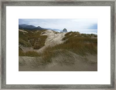 Haystack Rock Framed Print by Steven A Bash