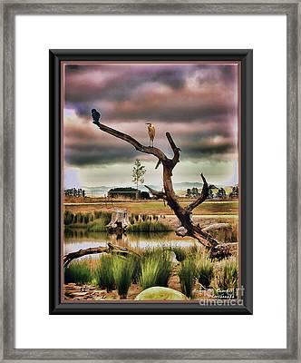 Hdr Wetlands Framed Print