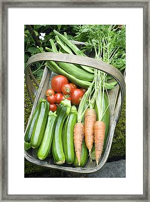 Home-grown Organic Vegetables Framed Print