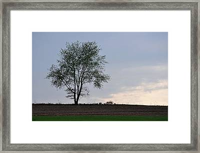 Horizon In April Framed Print by JAMART Photography