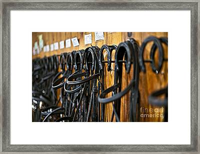 Horse Bridles Hanging In Stable Framed Print by Elena Elisseeva