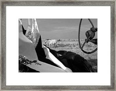 Horsing Around Framed Print by Linda Pope