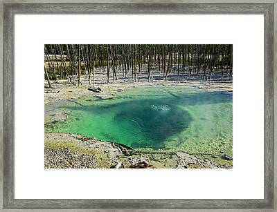 Hot Springs Yellowstone National Park Framed Print by Garry Gay
