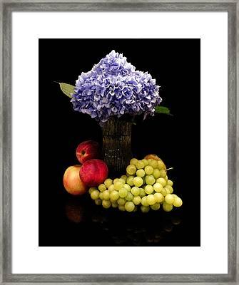 Hydrangea And Fruit Framed Print by Sandi OReilly