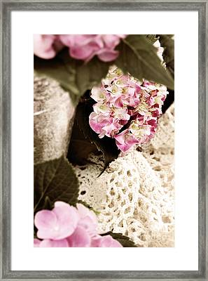 Hydrangeas And Lace Framed Print
