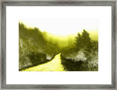 In The Forest Framed Print by Steve K