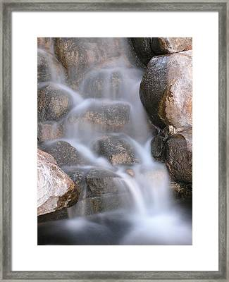In The Midst Framed Print by Shawn Hughes