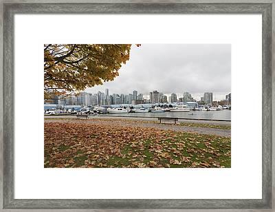 In Urban Stanley Park The Promenade Framed Print by Douglas Orton