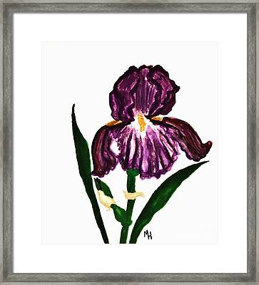 Iris Framed Print by Marsha Heiken