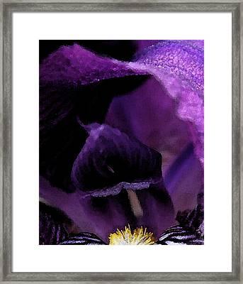 Iris Watercolor Framed Print