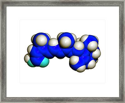 Isotretinoin Anti-acne Drug Framed Print by Dr Tim Evans