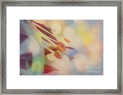 Joyfulness Framed Print by Aimelle