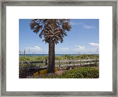 Juan Ponce De Leon Landing Site In Florida Framed Print by Allan  Hughes