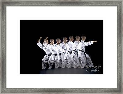 Karate Expert Framed Print by Ted Kinsman
