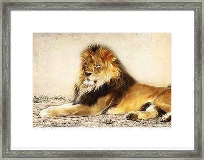 King Framed Print by Tilly Williams